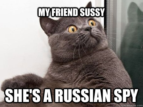 the russian spy cat